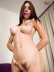 Ponn is a 25 years old, great looking ladyboy. She has a very cute face, fantastic soft surgery boobs with tattoos, a sexy uncut cock with a big head